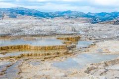 De mammoet hete lentes in Nationaal Park Yellowstone Stock Fotografie
