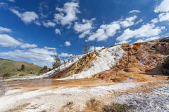 De mammoet Hete Lentes, Yellowstone, Wyoming, de V.S. Stock Foto's