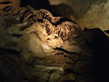 De mammoet holt het holreis uit van Kentucky de V.S. Royalty-vrije Stock Fotografie