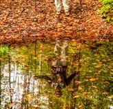 De man en zijn schaduw in Park heilige-Bruno Royalty-vrije Stock Foto