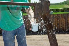 De man giet een Kop van water van de kolom (kraan) Stock Afbeeldingen