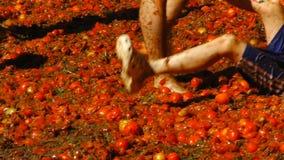 De man trekt de jongens` s benen over de tomaten, Vermaak op tomatenfestival stock videobeelden