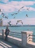 De man voedt vogels Zeemeeuwen op de dijk Stock Foto