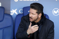 De manager van Diego Simeone van Atletico Madrid royalty-vrije stock foto's
