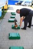 De managers van de hond worden opgeleid bij de douanehonden om drugs en wapens te zoeken Stock Foto