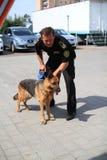 De managers van de hond worden opgeleid bij de douanehonden om drugs en wapens te zoeken Stock Fotografie