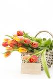 De mand van de bloem Royalty-vrije Stock Afbeeldingen