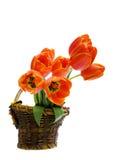 De mand van de bloem Stock Foto
