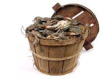 De mand van de bushel van krabben 3 Stock Foto