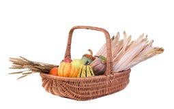 De Mand van de herfst stock fotografie