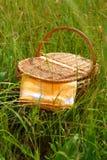 De mand van de picknick Royalty-vrije Stock Afbeelding