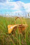 De mand van de picknick Stock Afbeelding