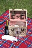 De Mand van de picknick Royalty-vrije Stock Foto