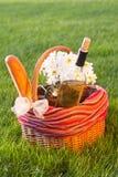 De mand van de picknick op het gras Royalty-vrije Stock Fotografie