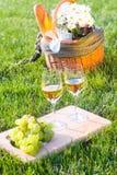 De mand van de picknick op het gras Stock Afbeeldingen