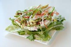 De Mand van de salade Royalty-vrije Stock Afbeelding