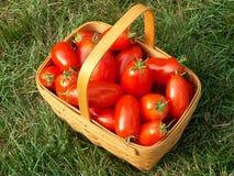 De mand van de tomaat Stock Afbeeldingen