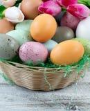De mand van eieren en de tulpen voor Pasen-vakantie op witte plattelander streven na Royalty-vrije Stock Fotografie