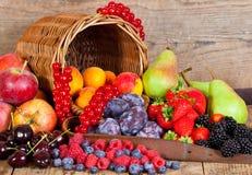 De Mand van het fruit Stock Afbeeldingen