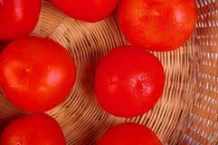 De mand van tomaten royalty-vrije stock foto's