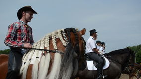 De manencowboy van de paardvlecht stock video