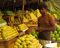 De mango gaat verkoper bij kant van de weg van India stock afbeeldingen