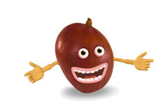 De mango van het beeldverhaal. Voorwerpen over wit. Stock Afbeelding
