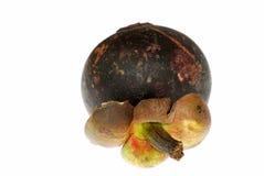 De mangostan van het fruit Stock Fotografie