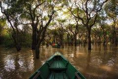 De Mangrove Forest Canoe van het Tonlesap royalty-vrije stock foto