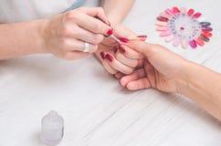 De manicure schildert de spijkers van vrouwen Stock Afbeeldingen