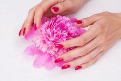 De manicure van het kuuroord met roze bloem Royalty-vrije Stock Afbeeldingen