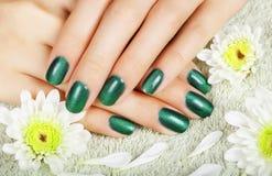 De manicure van vrouwen met effect van kat-oog gelpoetsmiddel Stock Foto
