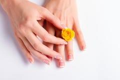 De Manicuredhanden met geel namen toe Royalty-vrije Stock Afbeelding