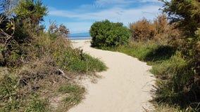 De manier aan het Strand in Nieuw Zeeland stock foto
