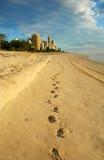 De manier aan Paradijs Surfers Stock Fotografie