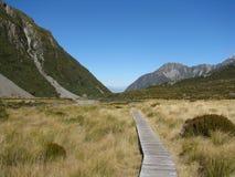 De manier aan Vosgletsjer in Nieuw Zeeland Stock Foto