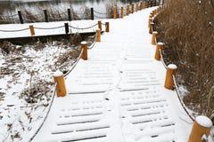 De manier in de sneeuw Royalty-vrije Stock Foto