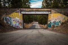 De manier van de de brugweg van de graffititrein Royalty-vrije Stock Foto's