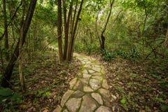 De manier van de steen Jardim do Eden, veadeiros van chapadados Stock Foto's