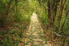 De manier van de steen Jardim do Eden, veadeiros van chapadados Stock Foto