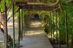 De manier van de tuin royalty-vrije stock foto's