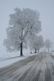 De manier van de winter Stock Fotografie
