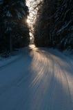 De manier van de winter Stock Afbeelding