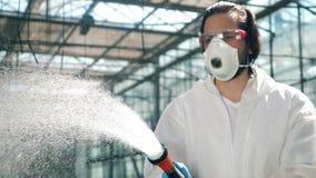 De mannelijke bioloog bespuit water op serreinstallaties stock video