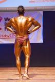 De mannelijke bodybuilder buigt zijn spieren en toont zijn beste lichaamsbouw Stock Afbeelding