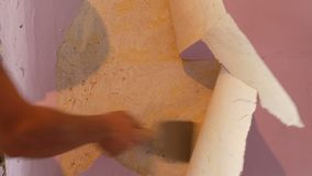 De mannelijke bouwershand scheurt weg of schil oud roze behang van de muur met een speciale spatel stock videobeelden