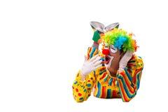 De mannelijke die clown op wit wordt ge?soleerd royalty-vrije stock afbeelding