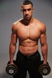 De mannelijke domoren van de bodybuilderholding, die de camera bekijken Royalty-vrije Stock Foto's