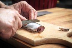 De mannelijke handen die een haring voorbereiden vissen met een keukenmes op een wo stock foto