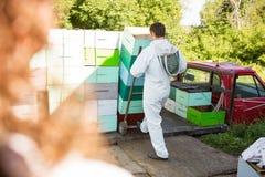 De mannelijke Kratten van Imkerloading stacked honeycomb Royalty-vrije Stock Foto's